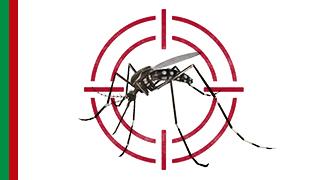 Vamos combater o Aedes aegypti: prevenir é responsabilidade de todos